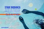 Stage de Biodanza