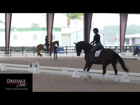 Robert Dover: The Canter Volte In Dressage