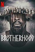 Irmandade / Brotherhood (2019-)