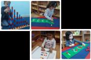Best Abu Dhabi Nursery – Khalifa and Al Bateen Nurseries