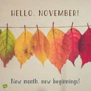 November Official Active List