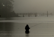 Fly Fishing in Fulford Harbour