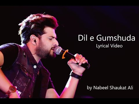 Dil e gumshuda OST | Hai mujh mai tu | Nabeel Shaukat Ali | Lyrical Video