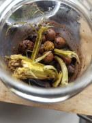 Blobarium