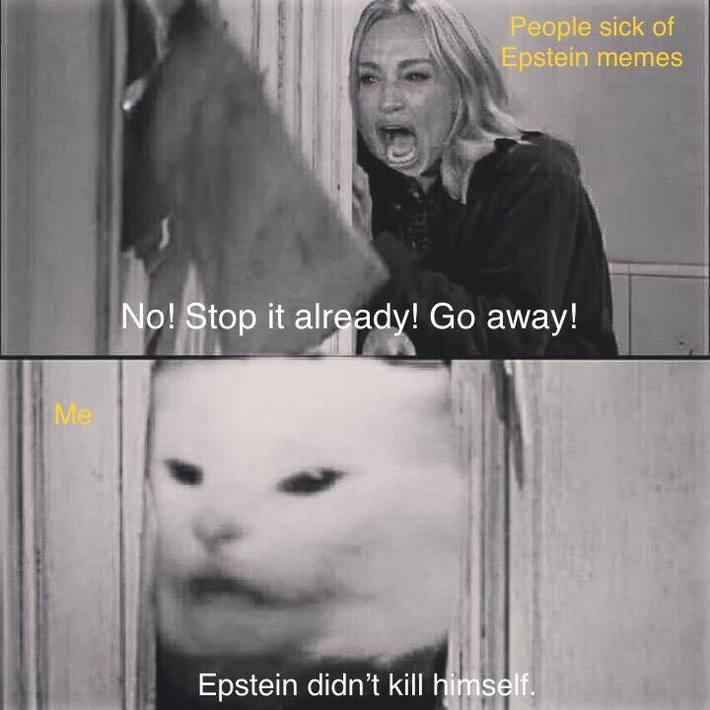 Epstein meme