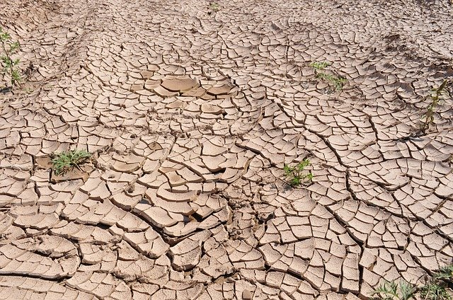 Farmers face draught power challenge