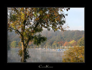 Autumnal Morning at Lake Kemnade