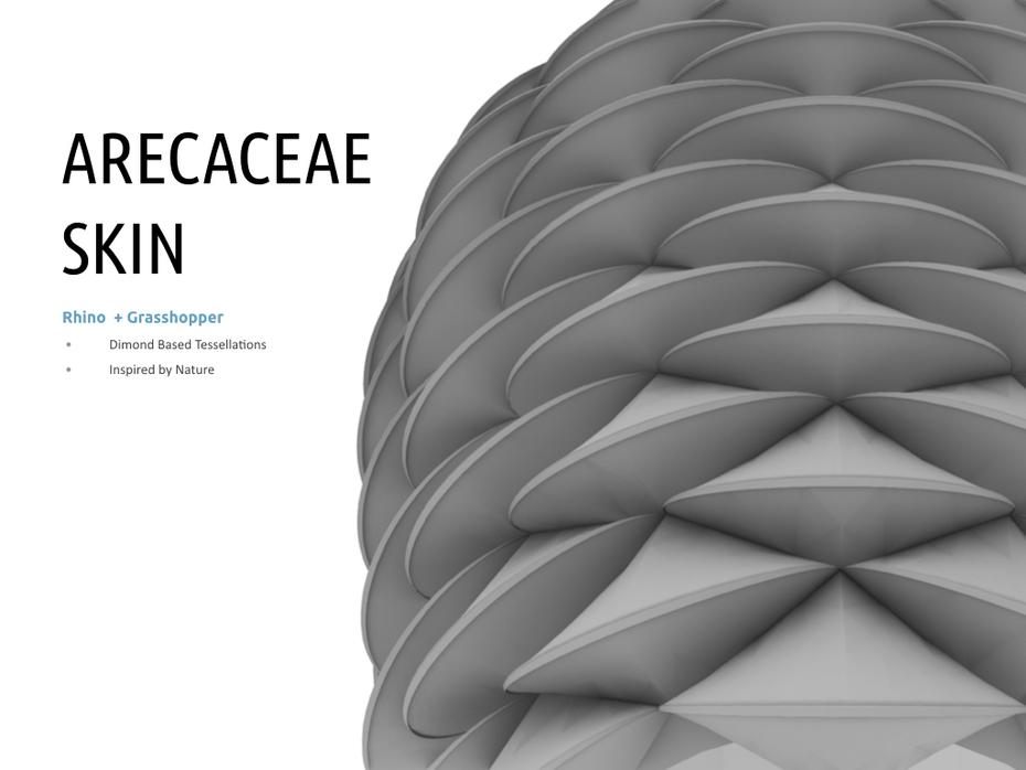 Arecaceae Skin