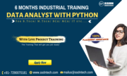 Industrial Training in Data Analyst with Python