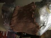 Cast corset sculpture