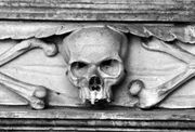 5813900-stone-skull-carved-in-tombstone-on-a-grave-black-and-white