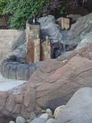 View of Sandbox in front of Fountain