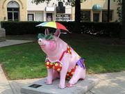 Lexington Bathing Beauty Pig