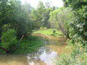 Upper Swearing Creek, Jersey Settlement 2006