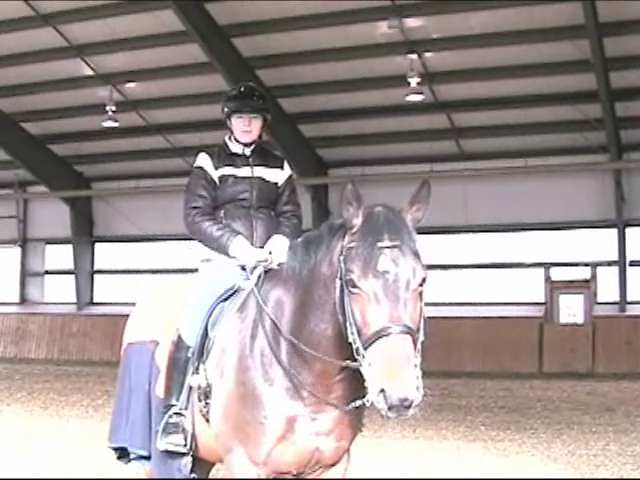 Olympic Rider Belinda Trussell on Buying A Horse
