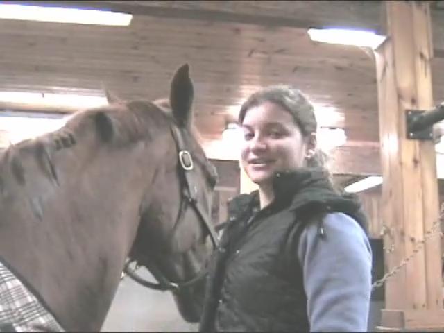 Horse Grooming: How to Braid Horses Mane