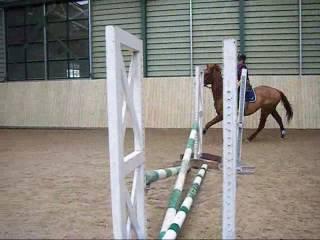 Me Riding My Horse Oscar=]