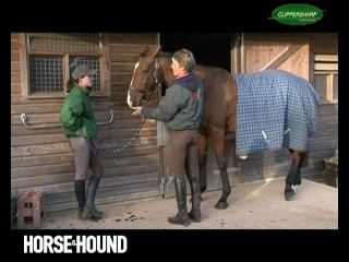 Horse & Hound's Tips on Clipping