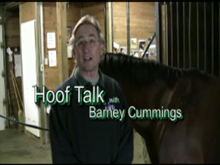 Hoof Talk with Barney Cummings: Pulling off a shoe yourself