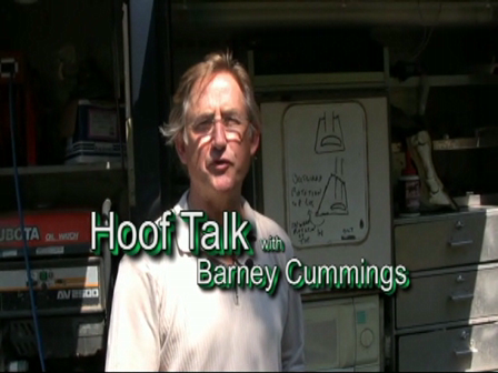 Barney Cummings HoofTalk: Landmarks of the Horse Hoof