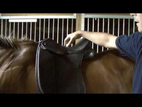 Saddle Fitting in 9 Steps - Step 1 - Balance