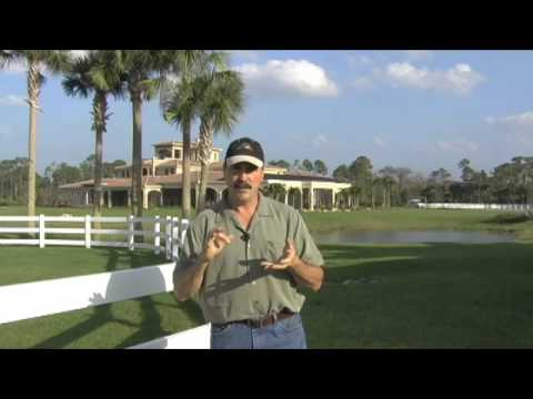 Why Equine Massage?  The Masterson™ Method