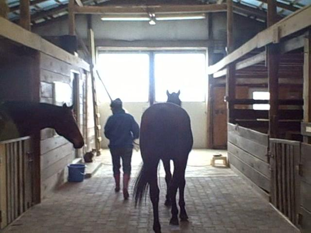 How cute is Freeburn?