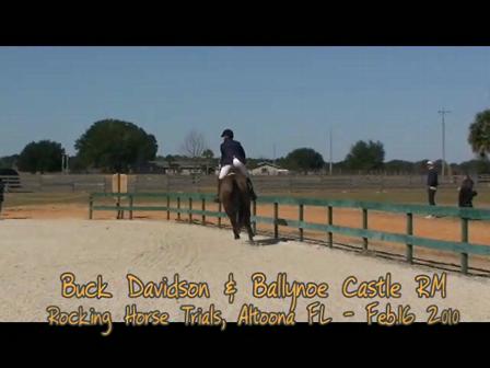 Buck Davidson and Ballynoe Castle_Show Jumping Feb16 2010