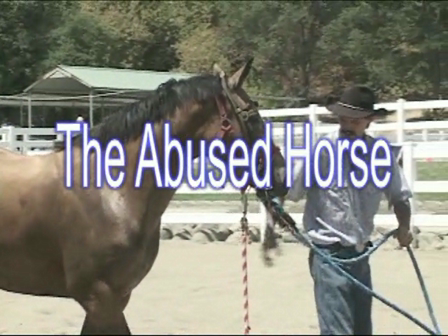 The Abused Horse