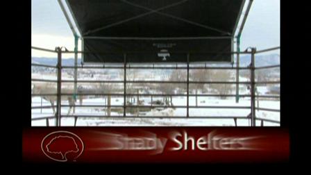 Easy Portable Shady Shelter