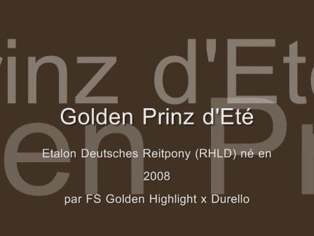 Golden Prinz d'Eté