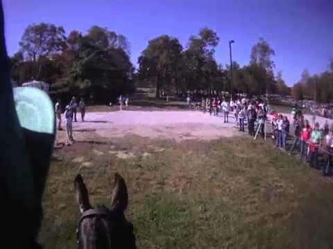 World Equestrian Games KY  2010,  HJ Hampton (Henny) and Peter Atkins XC Helmet Cam