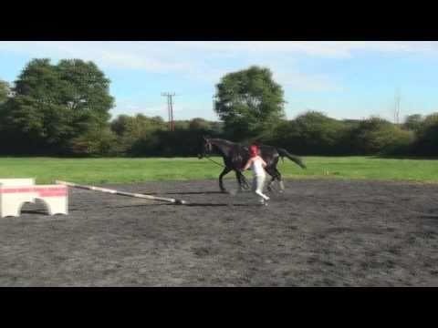 mister jumping September 2010