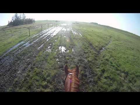 Mind's Eye Ranch Horse Trials Helmet Cam XC Training Level