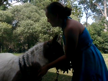 Trick Training Pony