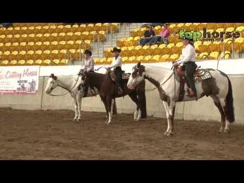 PHAA National Championship Show 2013 - 4YO Trail Horse