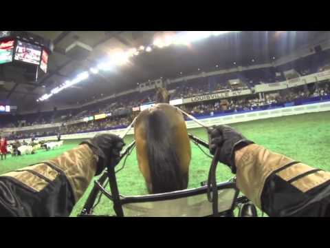 "Helmet Cam - William Shatner Driving!  ""More (Horse)Power, Scotty!"""
