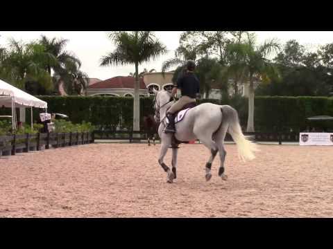 George Morris Explains the Simple Change at the Horsemastership Program