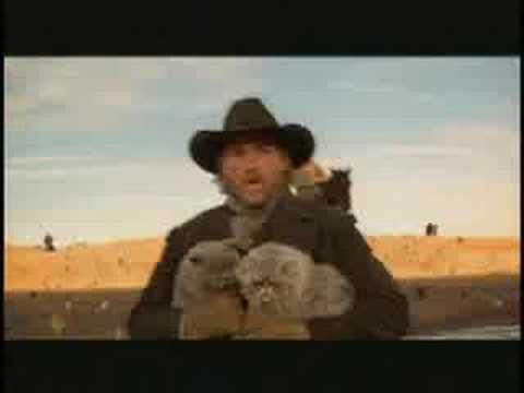 Cowboys Herding Cats