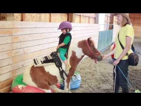 Adorable Toddler Doing Natural Horsemanship