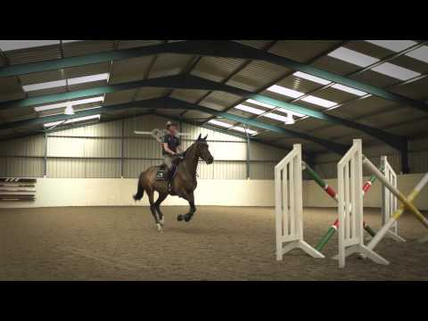 Showjumping - Excelling Under Pressure