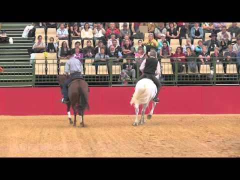 Manolo Mendez and Josh Lyons - Dressage vs. Western