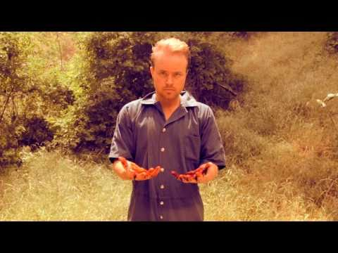 """MUSIC VIDEO: """"Pardon Line"""" by George Hartline & the Harmless Doves"""