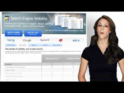 PSSPROS.com Search Engine Visibility Services