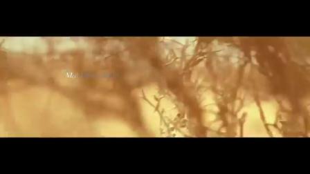 Saad Lamjarred - Mal Hbibi Malou