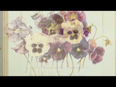 日日好文創教室 - 韓玉青老師 - 西洋書法花體字結合花卉創作教學課程