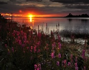 11 Sunset