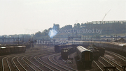 Building Chettle Court + Flying Scotsman at Harringay 1968