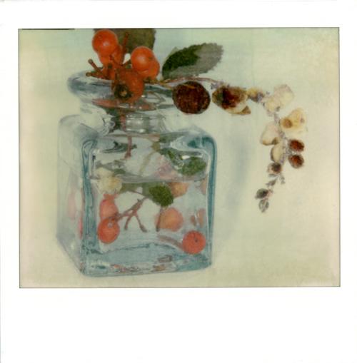 Natura morta - composizione n°2