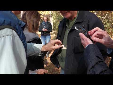 Mushroom Hike at the Preserve David Lewis leader